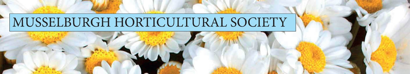 Musselburgh Horticultural Society